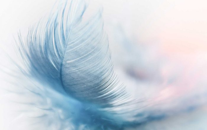 Jouw (hoog)gevoeligheid maakt deel uit van die prachtige en unieke Jij die je bent - blog Tineke Vanheule