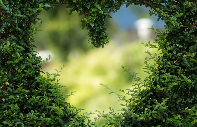 Het kan echt anders in een relatie - blog Tineke Vanheule